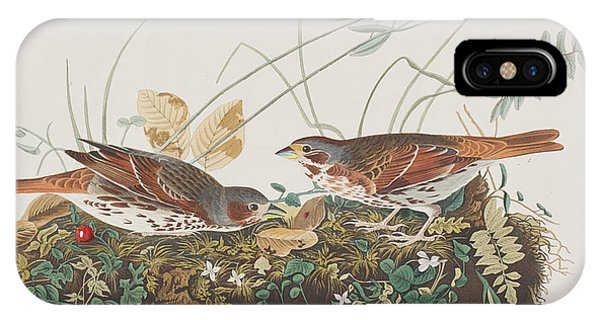 Fox Sparrow IPhone Case