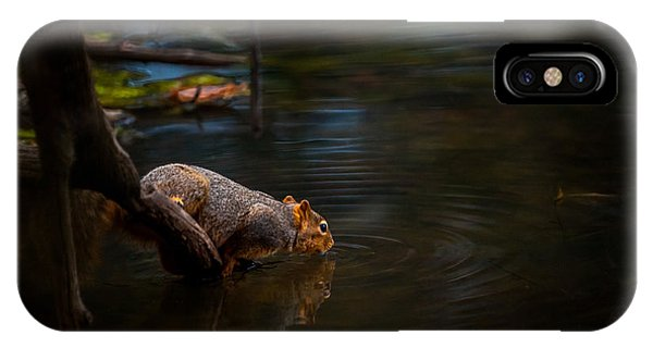Fox Squirrel Drinking IPhone Case