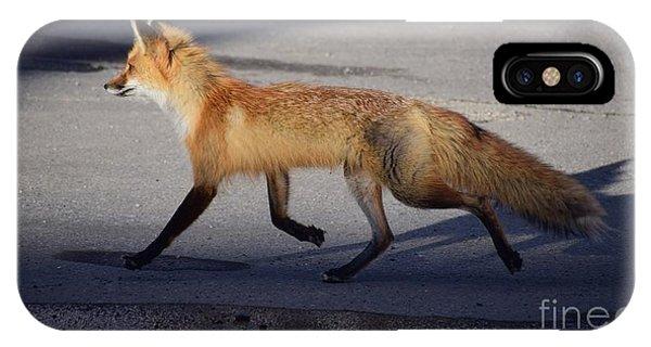 Fox Trot IPhone Case