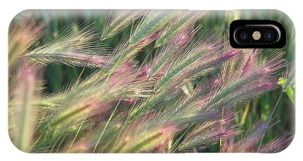 Foxtails In Spring IPhone Case