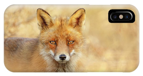 Foxy Faces Series- That Look IPhone Case