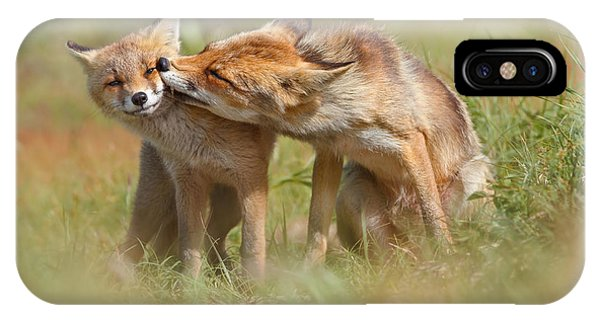 Valentine iPhone Case - Foxy Love Series - But Mo-om II by Roeselien Raimond