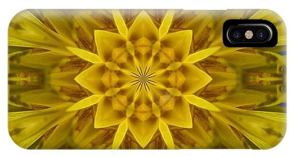 Fractal 10 IPhone Case