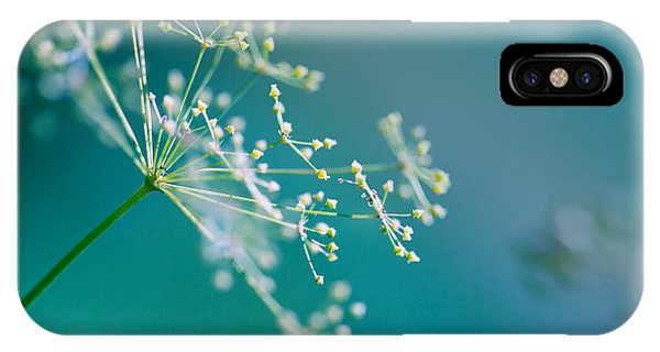 Detail iPhone Case - Fragile Dill Umbels by Nailia Schwarz