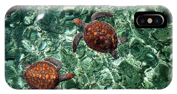 Fragile Underwater World. Sea Turtles In A Crystal Water. Maldives IPhone Case