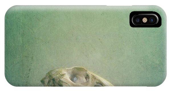 Teal iPhone Case - Fragility by Priska Wettstein