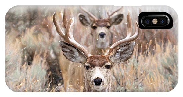 Mule Deer iPhone Case - Framed by Donna Kennedy