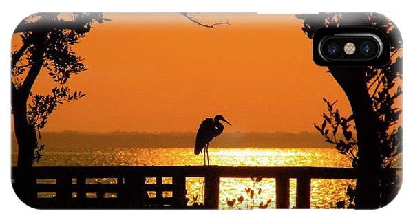 Framed Great White Egret IPhone Case