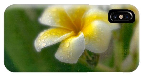 Frangipani IPhone Case