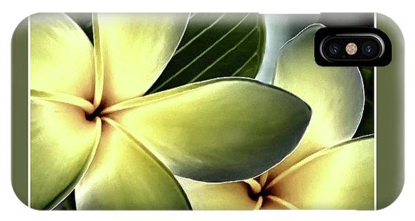 Frangipani - Plumeria IPhone Case