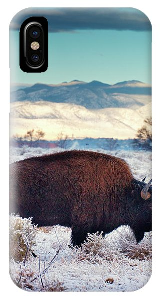 IPhone Case featuring the photograph Free To Roam by John De Bord