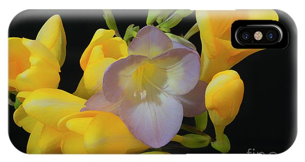 Freesias Softened 9 IPhone Case
