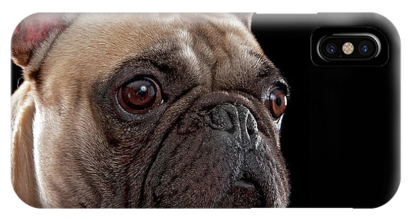 French Bull Dog iPhone Case - French Bull Dog by Hugo Orantes