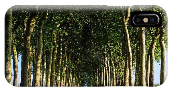 French Tree Lined Country Lane IPhone Case