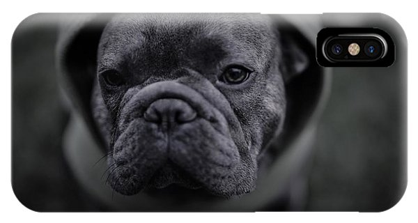 French Bull Dog iPhone Case - Frenchie In Black And White by Brian Redgrave
