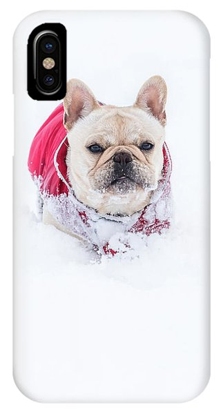 Frenchie In The Snow IPhone Case