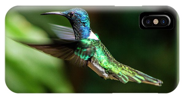 Frequent Flyer, Mindo Cloud Forest, Ecuador IPhone Case