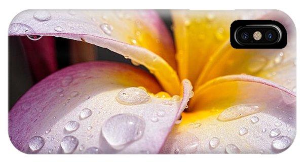 Fresh Flower IPhone Case