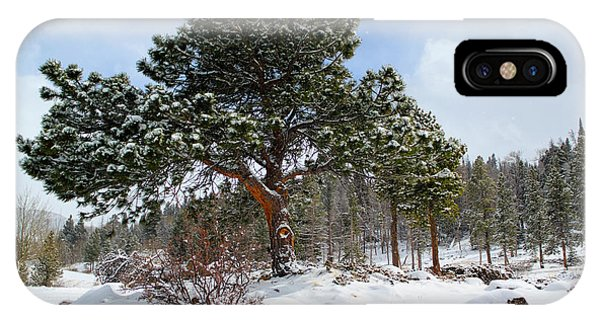Fresh Mountain Snow IPhone Case