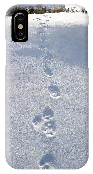 Fresh Wolf Tracks In Yellowstone IPhone Case
