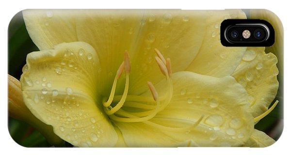 Fresh Yellow IPhone Case