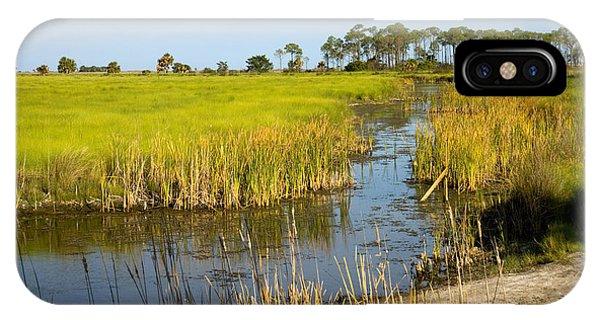 Wakulla iPhone Case - Freshwater Impoundment by Inga Spence