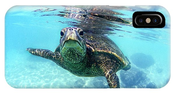 Famous Artist iPhone Case - friendly Hawaiian sea turtle  by Sean Davey