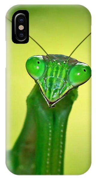 Friendly Mantis IPhone Case