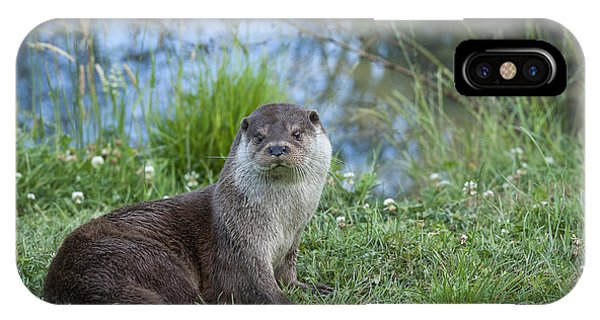 Friendly Otter Phone Case by Philip Pound