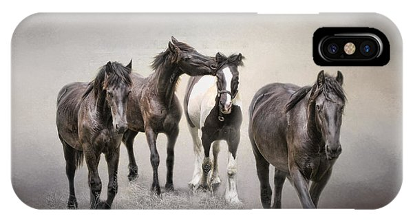 Friesian Horses The Boys And Baby Sister IPhone Case