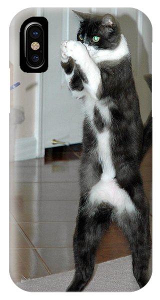 Frisbee Cat IPhone Case