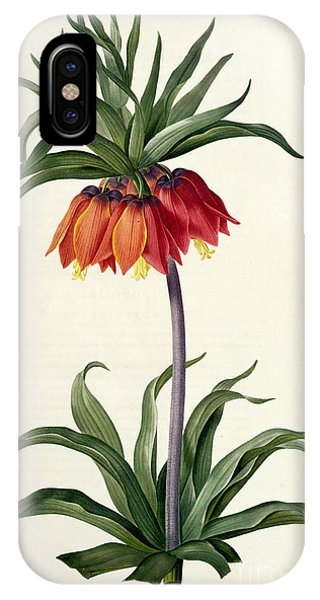 Botanical iPhone Case - Fritillaria Imperialis by Pierre Joseph Redoute