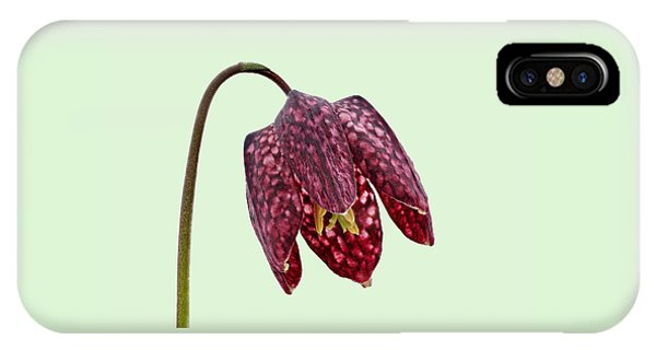 Fritillaria Meleagris Green Background IPhone Case