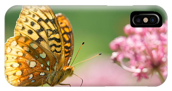 IPhone Case featuring the photograph Fritillary by Brian Hale