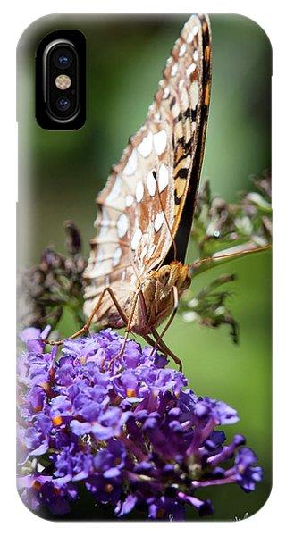 Fritillary IPhone Case
