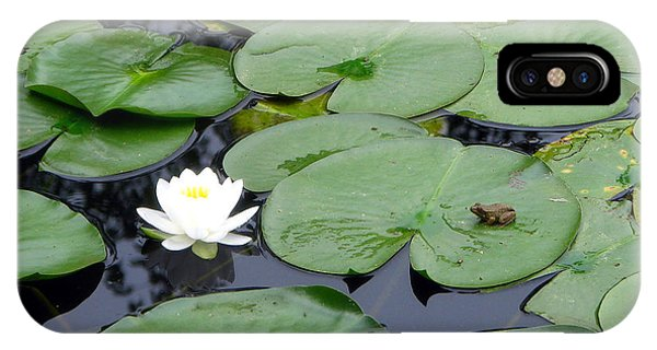 Frog On Lily Pad IPhone Case