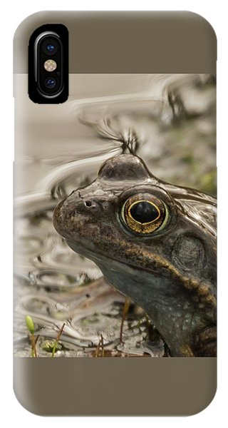 Frog Portrait IPhone Case