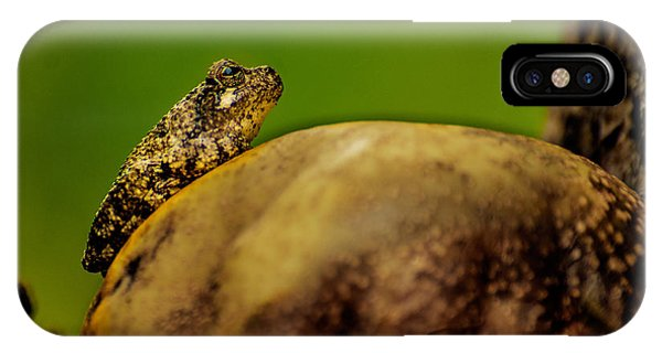Frog Waits IPhone Case