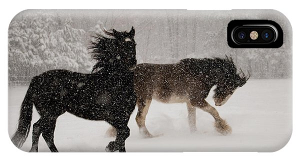 Frolic In The Snow IPhone Case