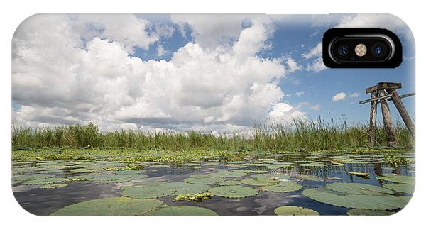 From A Frog's Point Of View - Lake Okeechobee IPhone Case