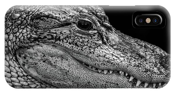 From The Series I Am Gator Number 9 IPhone Case