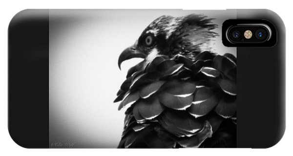 From The Series The Osprey Number 4 IPhone Case
