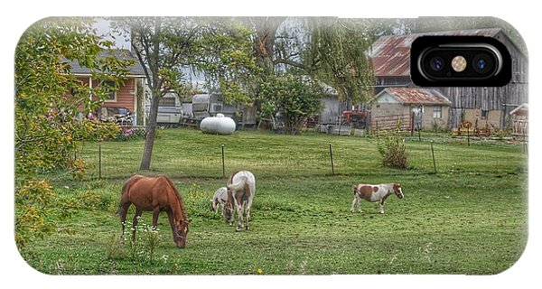 1008 - Front Yard Ponies IPhone Case