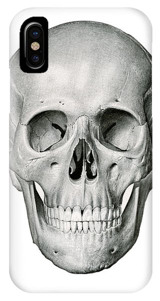 Bone iPhone Case - Frontal View Of Human Skull by German School