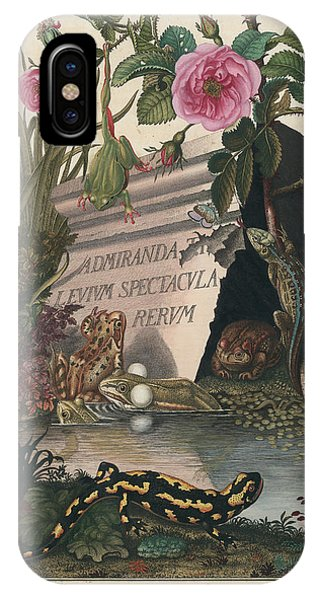 IPhone Case featuring the drawing Frontis Of Historia Naturalis Ranarum Nostratium by August Johann Roesel von Rosenhof