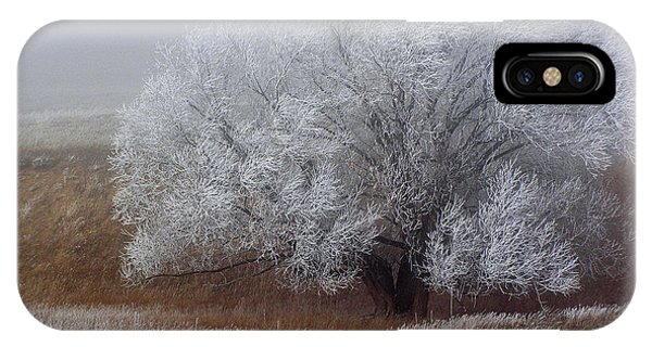 Frost And Fog IPhone Case