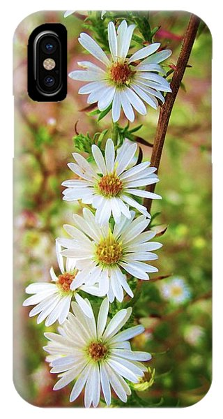 Frost Aster IPhone Case