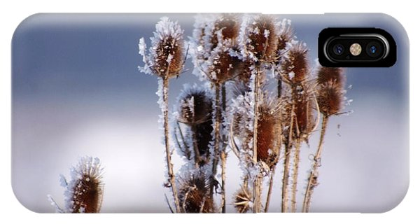 Frost In The Morning IPhone Case
