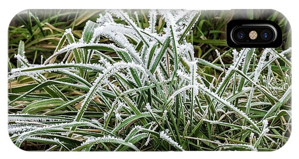 iPhone Case - Frosted Grass by Bill Linn