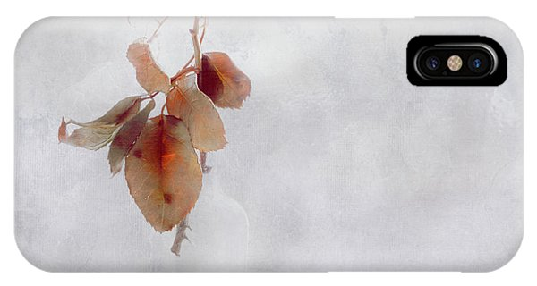 IPhone Case featuring the photograph Frosted Red Rose In Window Of Time by Anna Louise